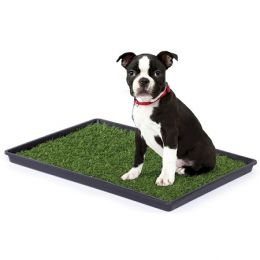 Tinkle Turf (Size: small)